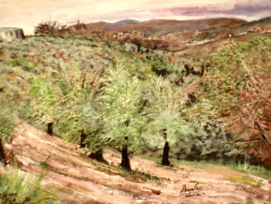 olivetrees.png